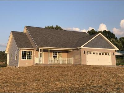 Johnson City Single Family Home For Sale: 505 Toll Branch Road