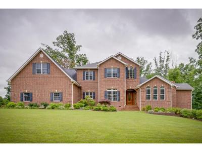 Elizabethton Single Family Home For Sale: 1012 Jordan Rd