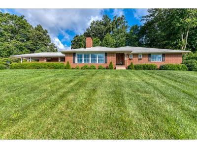 Bristol Single Family Home For Sale: 425 West Valley Drive