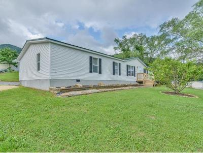 Elizabethton Single Family Home For Sale: 161 Clover Branch