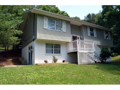 Single Family Home For Sale: 401 Floyd Hollow Road