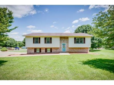 Hawkins County Single Family Home For Sale: 2017 Ohio St