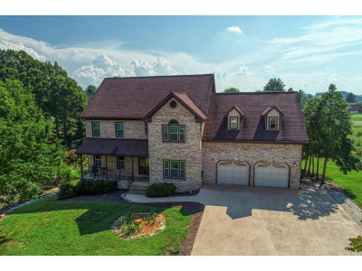 Kingsport Single Family Home For Sale: 220 Park Ridge Ct