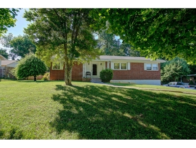 Bristol Single Family Home For Sale: 229 Woodbine Rd.