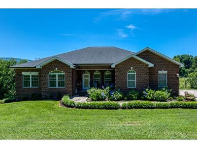 Bristol Single Family Home For Sale: 2245 Bullock Hollow Rd