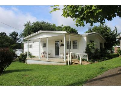 Hawkins County Single Family Home For Sale: 305 N Armstrong