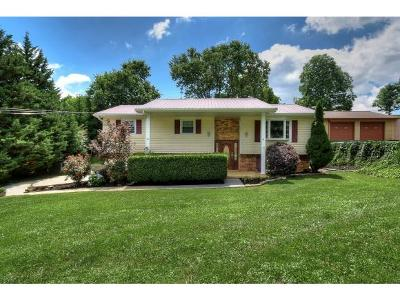 Johnson City Single Family Home For Sale: 139 Clearview St
