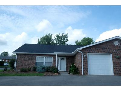 Johnson City Single Family Home For Sale: 5 Boone Hill Ct