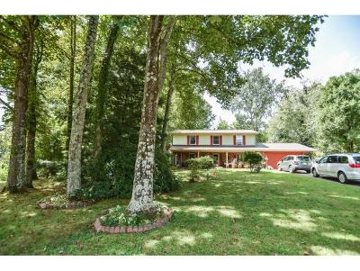 Johnson City Single Family Home For Sale: 109 Pine Court