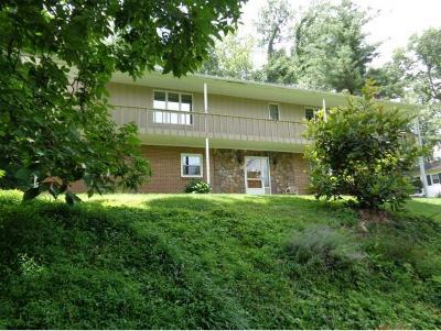 Bristol VA Single Family Home For Sale: $159,900