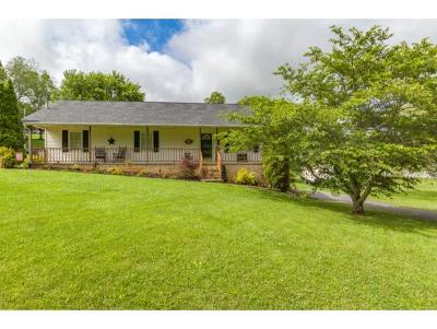 Hawkins County Single Family Home For Sale: 140 Ridgemont Road