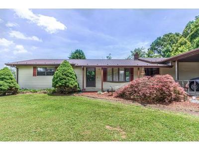 Jonesborough Single Family Home For Sale: 138 Twin Oaks Drive
