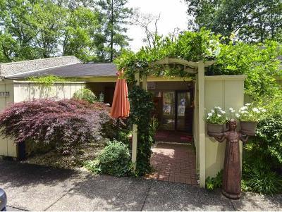 Bristol VA Condo/Townhouse For Sale: $143,900