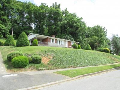 Elizabethton Single Family Home For Sale: 356 Pine Hill Road