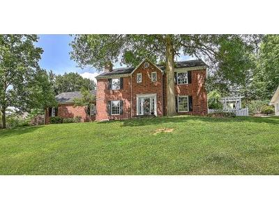 Kingsport Single Family Home For Sale: 1212 Radcliffe Avenue