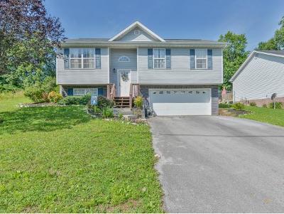 Johnson City Single Family Home For Sale: 1107 Snowden Terrace