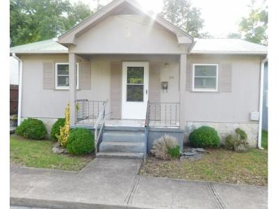 Bristol Single Family Home For Sale: 514 9th Street