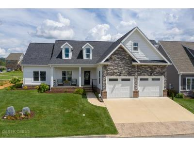 Kingsport Single Family Home For Sale: 1731 Ethans Court