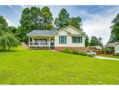 Single Family Home For Sale: 166 Nicole Drive