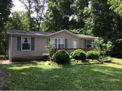 Greeneville Single Family Home For Sale: 270 J Mell Johnson