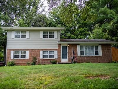 Greeneville Single Family Home For Sale: 109 Rainbow Circle