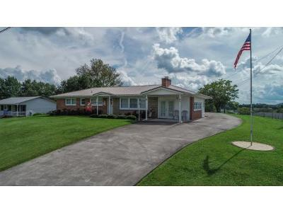 Kingsport Single Family Home For Sale: 113&115 Cassidy Rd.