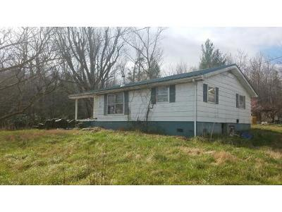Greeneville Single Family Home For Sale: 1970 Seaton Road