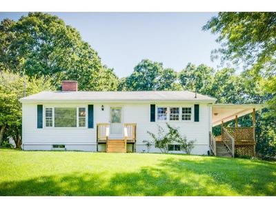Single Family Home For Sale: 528 Hammond Avenue