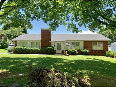 Johnson City Single Family Home For Sale: 105 W 12th Street