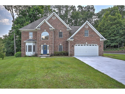 Kingsport Single Family Home For Sale: 1001 Forrest Ridge Dr