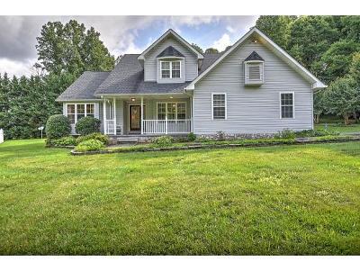 Unicoi Single Family Home For Sale: 127 Oak Dr