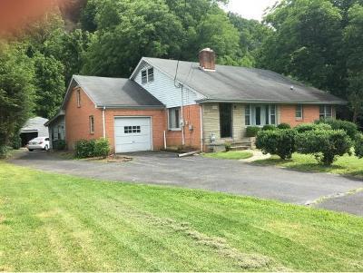 Elizabethton Single Family Home For Sale: 1216 Broad Street Ext.