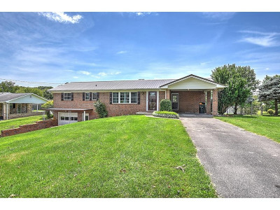 Greeneville Single Family Home For Sale: 1102 Sun Valley Dr