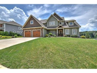 Kingsport Single Family Home For Sale: 3034 Calton Hill