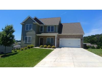 Jonesborough Single Family Home For Sale: 123 Bob Ford Rd