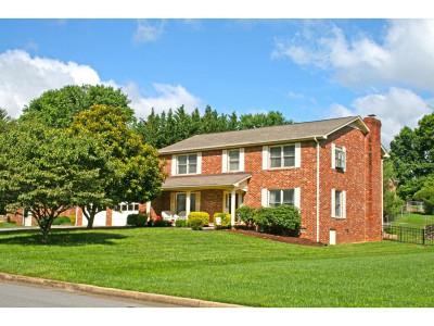 Johnson City Single Family Home For Sale: 706 Douglas Drive