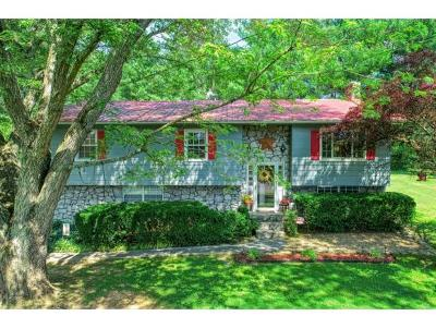 Rogersville Single Family Home For Sale: 625 Skyview Drive