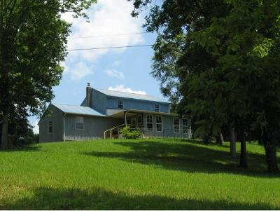 Bean Station, Thorn Hill, Rutledge, Washburn, Blaine Single Family Home For Sale: 431 Myers Road