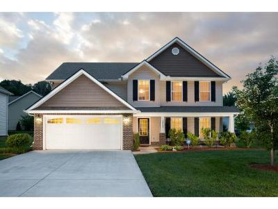 Kingsport Single Family Home For Sale: 2908 Royal Mile Divide
