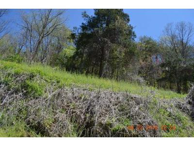 Unicoi Residential Lots & Land For Sale: Lady Bug