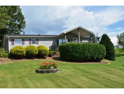 Single Family Home For Sale: 1028 Conklin Road
