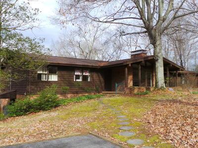 Kingsport Single Family Home For Sale: 4522 Brookridge Drive