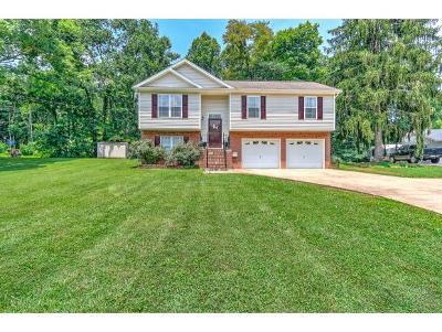 Kingsport Single Family Home For Sale: 5616 Orebank Road