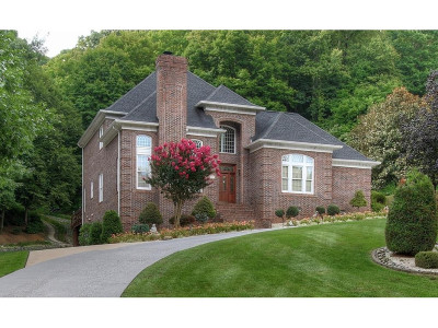 Single Family Home For Sale: 215 Shadowood Dr
