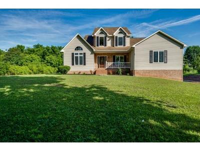 Washington-Tn County Single Family Home For Sale: 237 Cedar Point Road