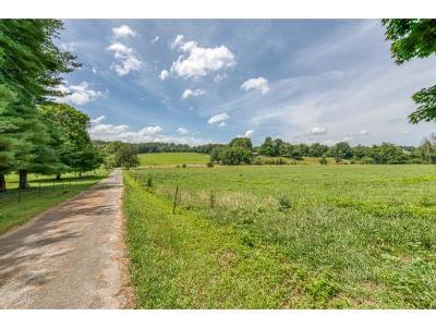 Johnson City Residential Lots & Land For Sale: 512 Claude Simmons Rd