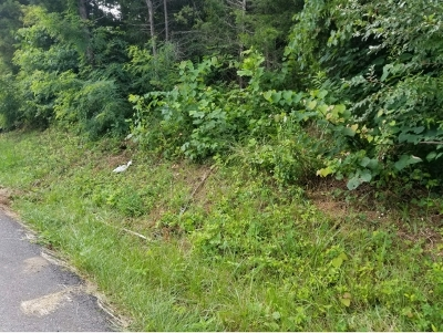 Washington-Tn County Residential Lots & Land For Sale: 394 Wilcox Circle