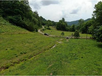 Grainger County Residential Lots & Land For Sale: 3753 Bullen Valley