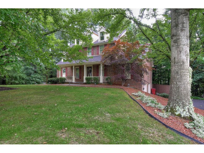 Washington-Tn County Single Family Home For Sale: 3503 Chelsea Ln