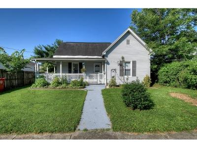 Johnson City Single Family Home For Sale: 809 N Boone Street